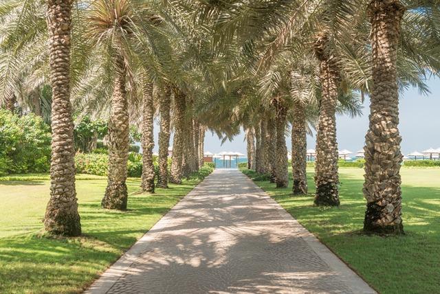 Coral Beach Resort Sharjah Sharjah Use Coupon Code Hotels Get 10 Off