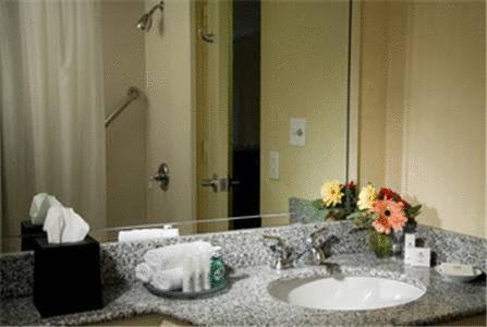 guest room - Wyndham Garden New Orleans Airport