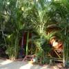 accommodation_saival
