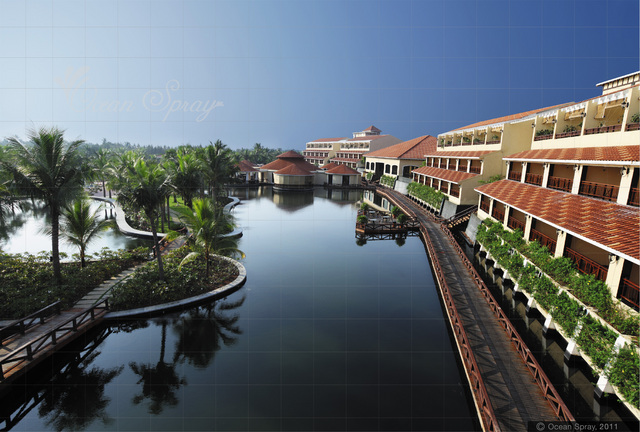 Ocean Spray Pondicherry Use Coupon Code Gt Gt Festive