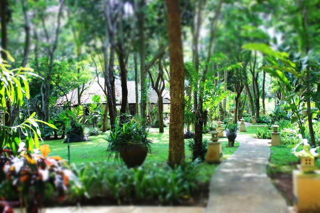 Anyamanee Khao Yai Resort, Pak Chong. Use Coupon Code >> STAYINTL ...
