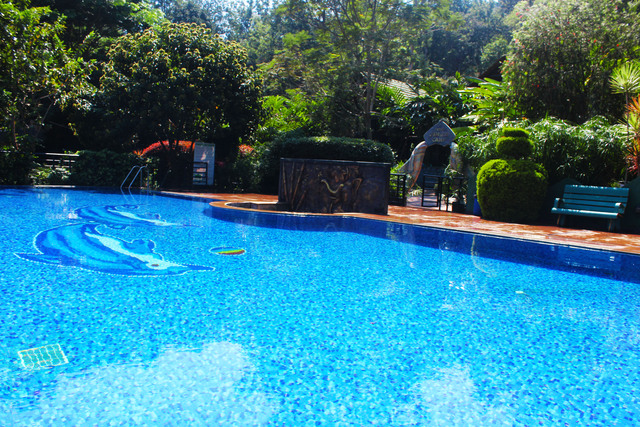 Coorg jungle camp backwater resort coorg use coupon code hotels get 10 off Hotels in coorg with swimming pool