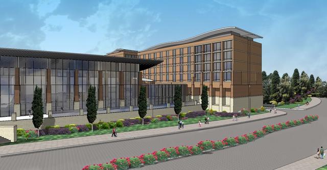 results view - Hilton Garden Inn Dallas