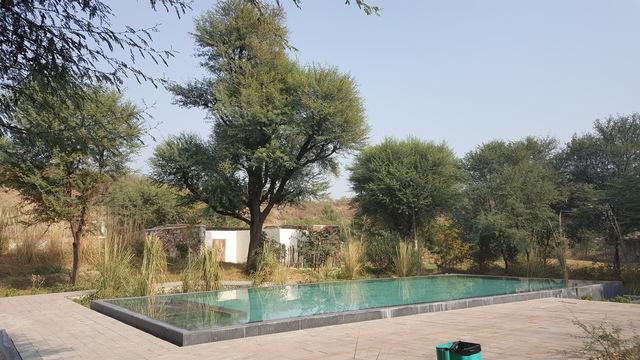 Swimming_Pool_a
