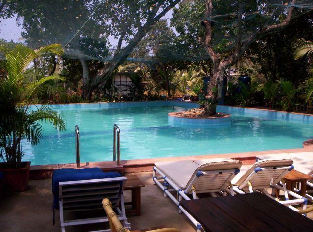 pool.242182004_std