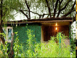 Tree House Resort Jaipur Use Coupon Code Gt Gt Bestbuy
