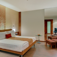 Hyatt_King_Room