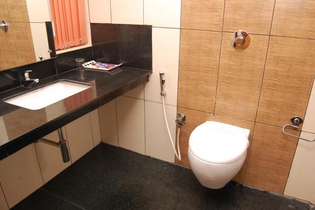 Western_Toilet_bathroom