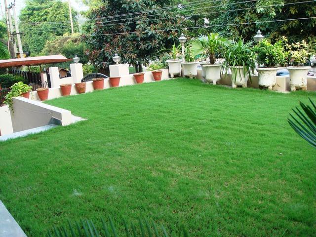 kashish_garden