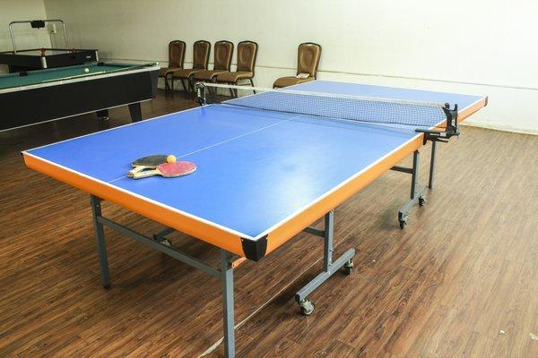 Table_Tennis_(2)_1
