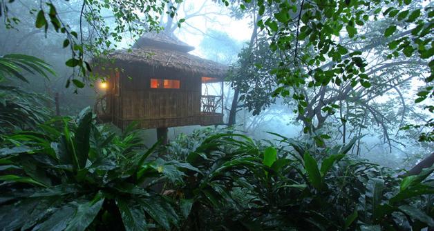 Vanya Tree House Thekkady Room Rates Reviews Amp Deals