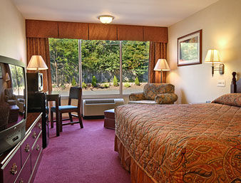 guest room - Hilton Garden Inn Bridgewater