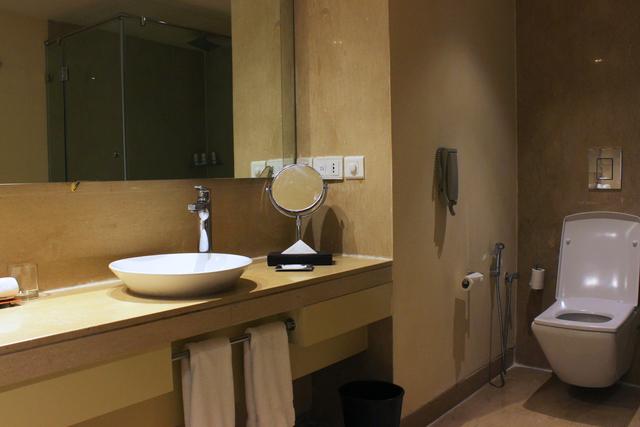 Business_Class_Room_Bathroom_(1)