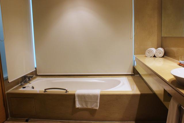 Business_Class_Room_Bathroom_(2)
