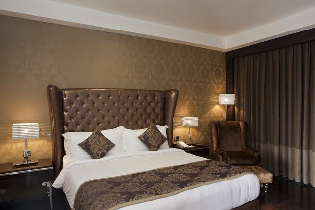 Business_Class_Room_-_Radisson_Blu_Hotel_New_Delhi_Paschim_V