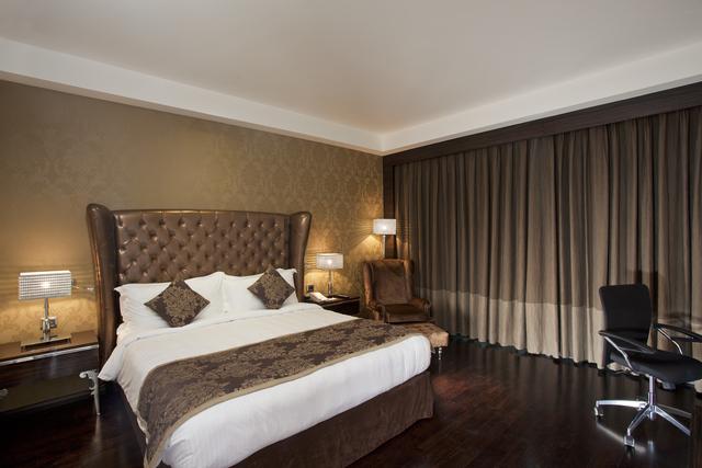 Business_Class_Room_-_Radisson_New_Delhi_Paschim_Vihar_2