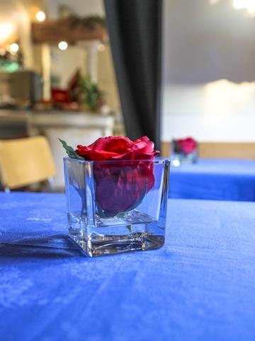 Hotel Soggiorno Athena, Pisa   Reviews, Photos, Room Rates