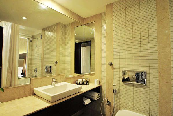 Hotel_Hindusthan_Internationa_premirer_(6)