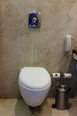 Luxery_Twin_Bathroom_3