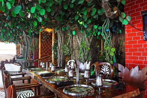 Hotel Ohri's Banjara Party Areas