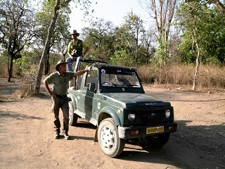 Jungle_Safari_Services