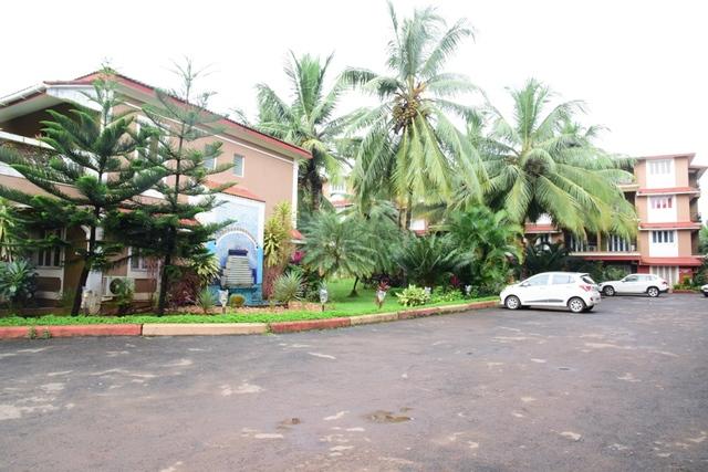 parking_(2)