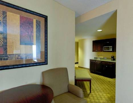 Holiday Inn Express Hotel & Suites Tampa -USF-Busch Gardens, Temple ...