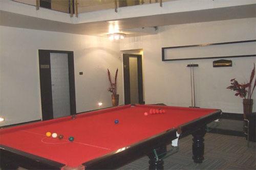 10_Snooker