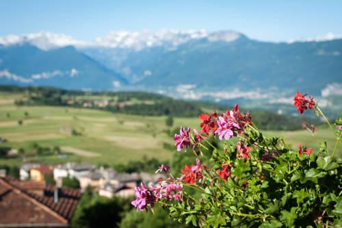 Blumen Hotel Bel Soggiorno, Malosco. Use Coupon Code HOTELS & Get 10 ...