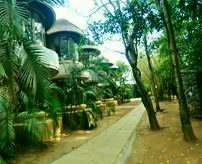 around-the-resort