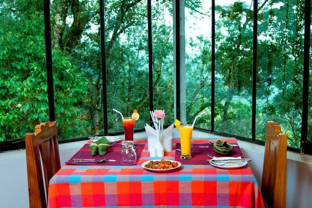 bracknell-forest-munnar-restaurant3-41702922fs