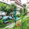 hotel-utsav-manali-manali-garden-area-114782804848-jpeg-fs