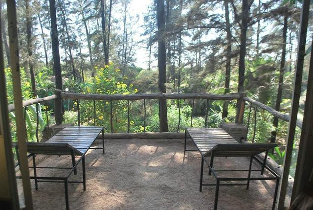 Exotica the beach resort diveagar use coupon code hotel - Resorts in diveagar with swimming pool ...