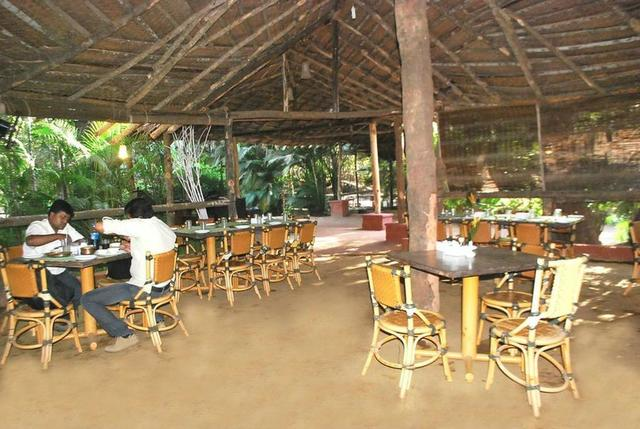 Exotica The Beach Resort Diveagar Room Rates Reviews