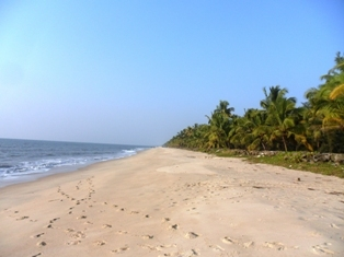 Clean_Beach_Side