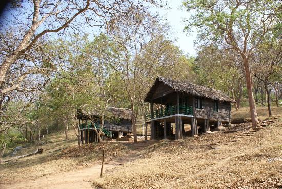 k-gudi-wilderness-camp