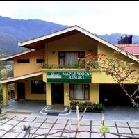the-maplewood-resort-gangtok-exterior-41805919g