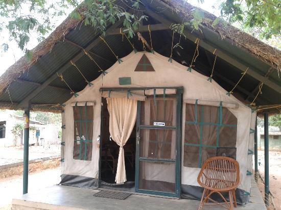 jungle-lodges-bannerghatta_(1)