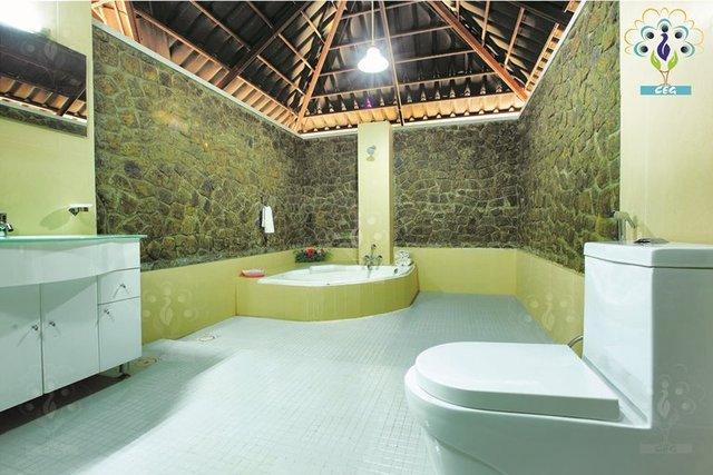 7Peacock_Royal_Villa_master_bathroom