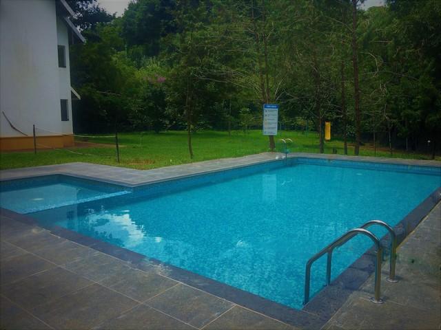 pool_new