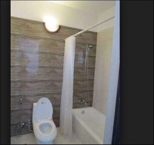 Rainforest_bathroom_2