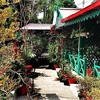 cheap-guest-house-mukteshwar