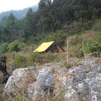 janardan-resort-churaini-nainital-swiss-tent-34463834g
