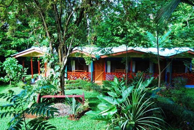 100% Zufriedenheit online zum Verkauf tolle Auswahl Ara Ambigua Lodge, Sarapiqui. Use Coupon Code HOTELS & Get ...